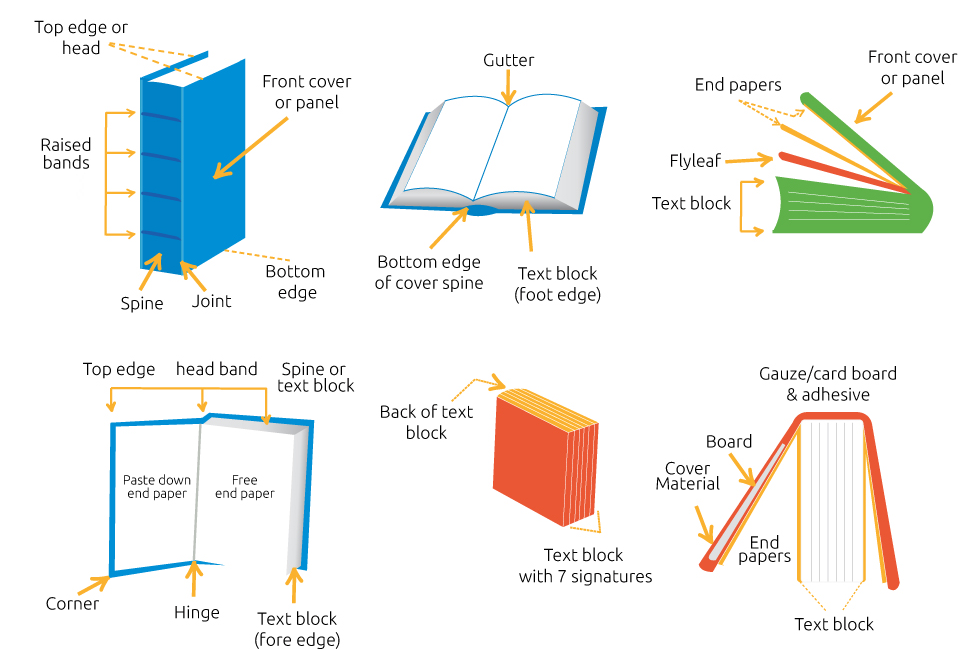 basic parts of book report